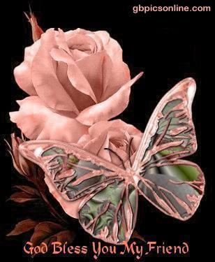 Schmetterlinge bild 1