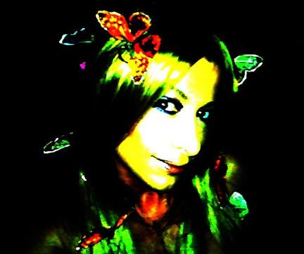 Schmetterlinge bild #8072
