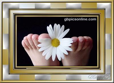 Gänseblümchen zwischen Füßen