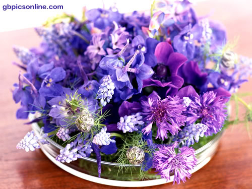 Edles Bouquet in violett