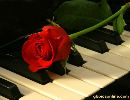 Eine Rose schmückt das Piano