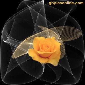 Astral-Rose