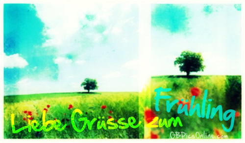 Frühling bild 10