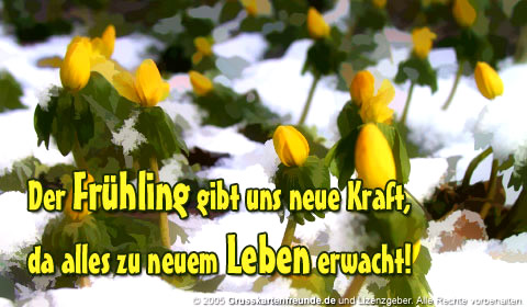 Der Frühling gibt uns...