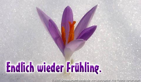 Endlich wieder Frühling.