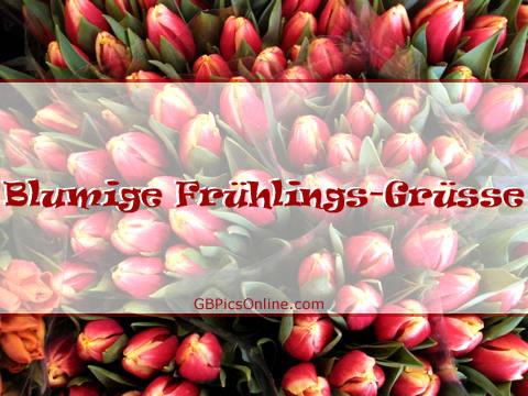 Blumige Frühlings-Grüße