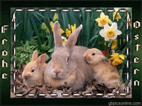 Frohe Ostern bild 10