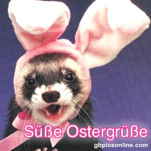Lustiges zu Ostern bild #11804