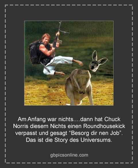 "Am Anfang war nichts....dann hat Chuck Norris diesem Nichts einen Roundhousekick verpasst und gesagt ""Besorg dir nen Job""...."