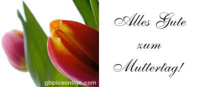 Alles Gute zum Muttertag!