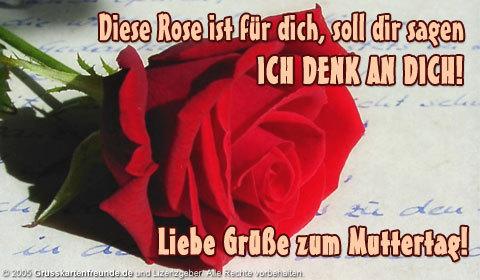 Diese Rose ist für dich...
