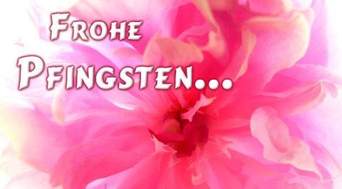 Frohe Pfingsten...