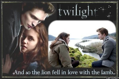 Twilight bild 7