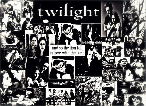 Twilight bild 10