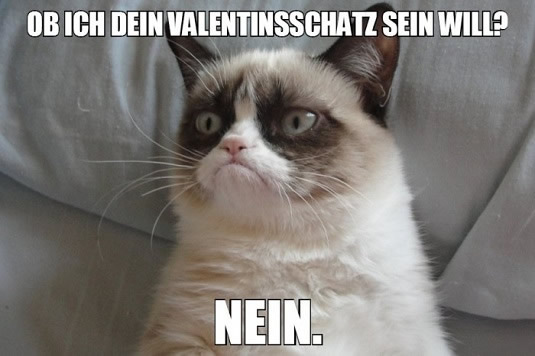 Anti Valentinstag GB Pics