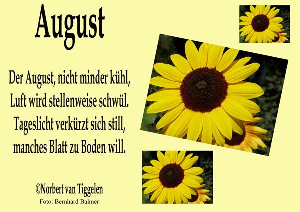 August. Der August, nicht minder kühl, Luft wird stellenweise schwül. Tageslicht verkürzt sich still, manches Blatt zu...