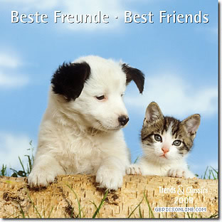 Beste Freunde - Best Friends