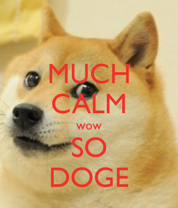 Much Calm Wow So Doge