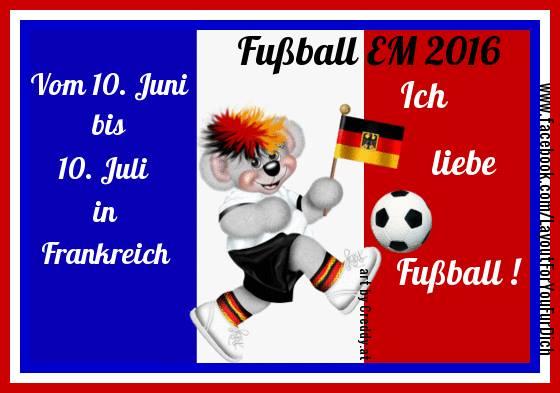 Fußball EM bild 9