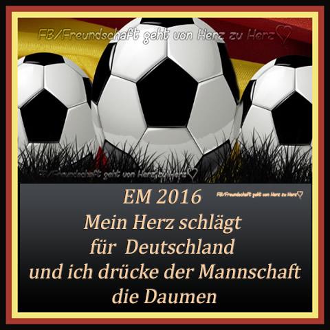 Fußball EM 6