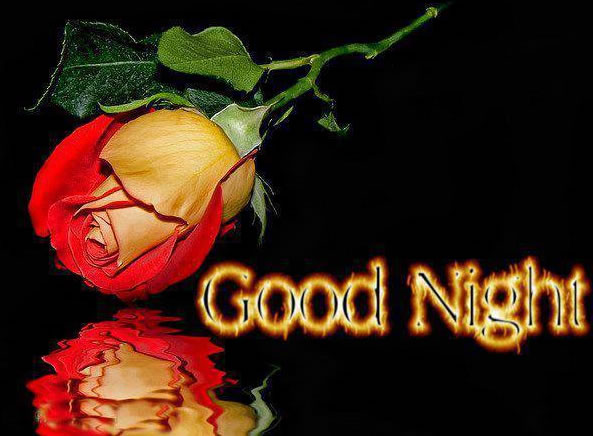 Good Night bild 5