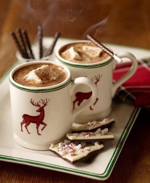 Winterliche Kaffeepause