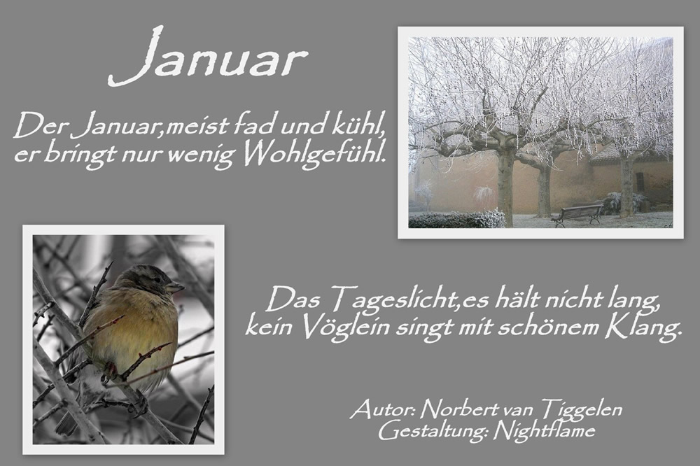 Januar. Der Januar, meist fad und kühl, er bringt nur wenig Wohlgefühl. Das Tageslicht, es hält nicht lang, kein Vöglein...