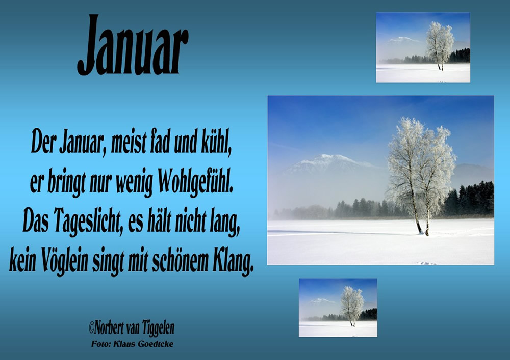 Januar. Der Januar, meist fad...