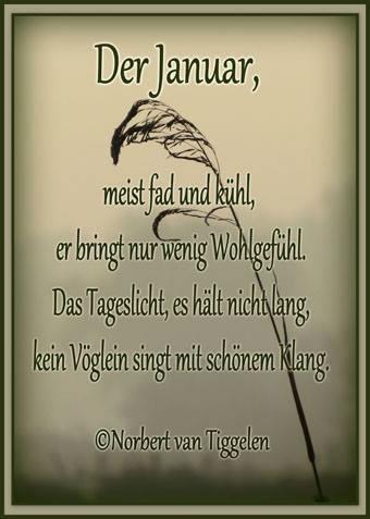 Der Januar, meist fad und kühl, er bringt nur wenig Wohlgefühl. Das Tageslicht, es hält nicht lang, kein Vöglein singt...