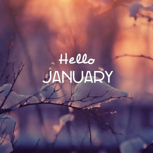 Hello January.