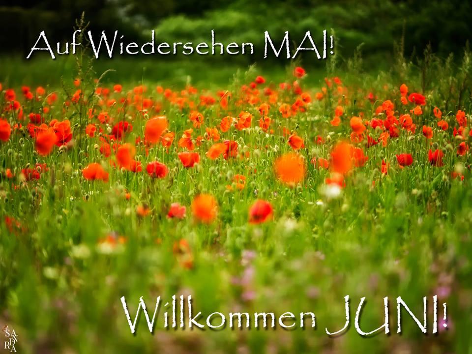 Auf Wiedersehen Mai! Willkommen Juni!