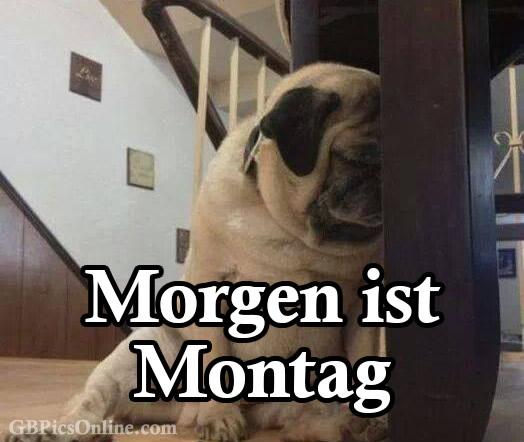 Morgen ist Montag bild 7