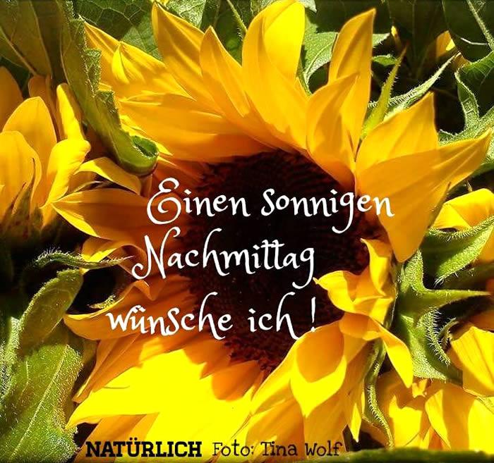 Einen sonnigen Nachmittag wünsche ich!