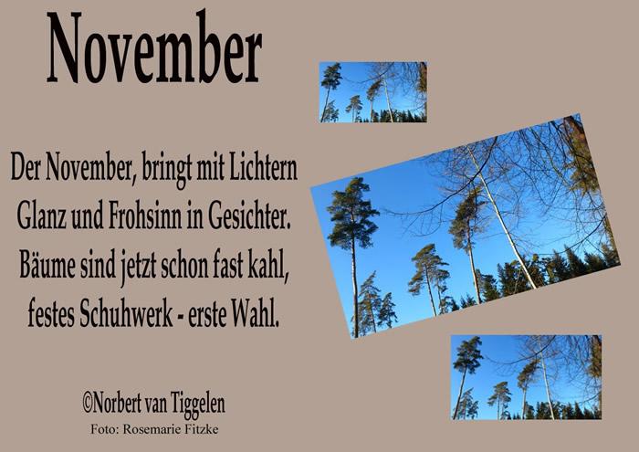November. Der November, bringt mit Lichtern Glanz und Frohsinn in Gesichter. Bäume sind jetzt schon fast kahl, festes...