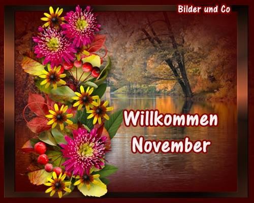 November bild 1