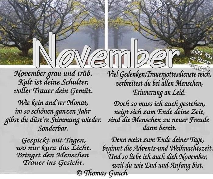 November bild 3