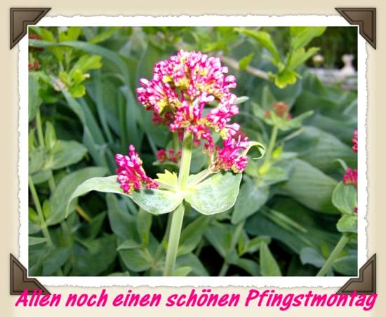 pfingstmontag_002.jpg