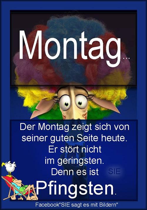 Montag... Der Montag zeigt...
