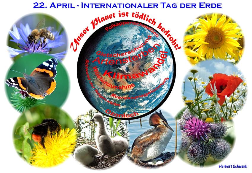 Tag der Erde bild 6