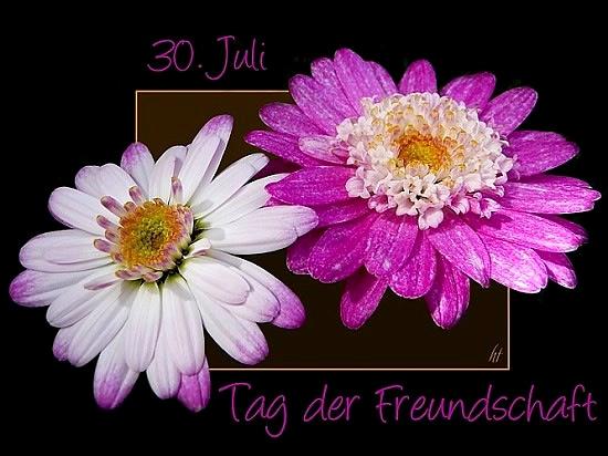 30. Juli Tag der Freundschaft