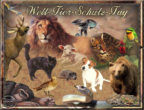 Welt-Tier-Schutz-Tag