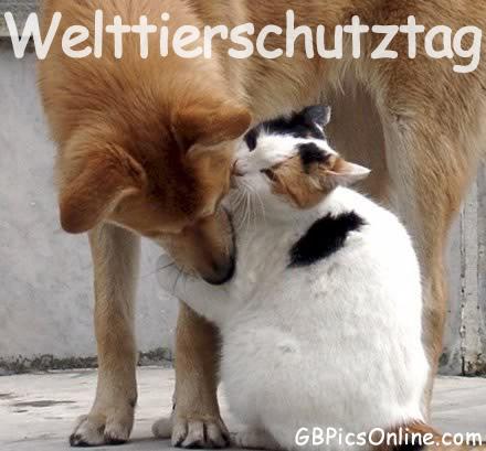Welttierschutztag GB Pic : 3