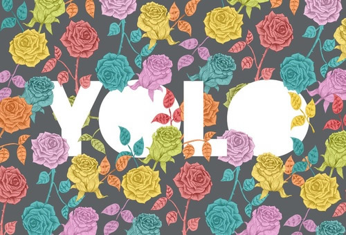 YOLO bild #23314